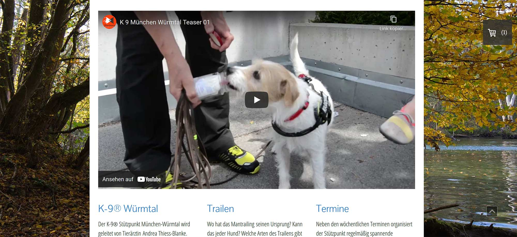 Suchhunde München Würmtal